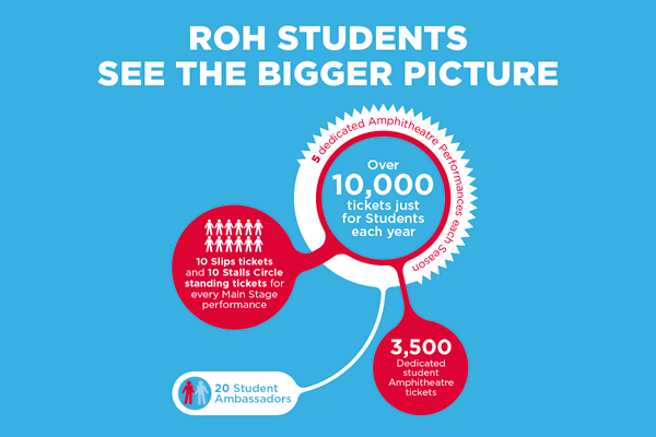 ROH students - See the bigger picture
