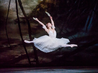Marianela Nuñez as Giselle in Giselle © 2016 ROH. Photograph by Tristram Kenton