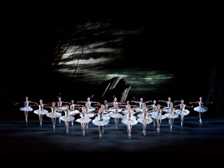 Artists of The Royal Ballet in Swan Lake ©ROH. Photographed by Bill Cooper.