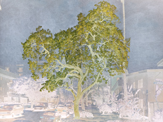 Purgatorio, Design: Tacita Dean, 2021 Courtesy the artist; Frith Street Gallery, London and Marian Goodman Gallery, New York/Paris